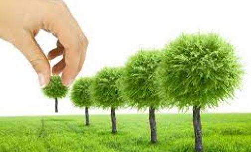 Класификация на площадки по Закон за опазване на околната среда (ЗООС)